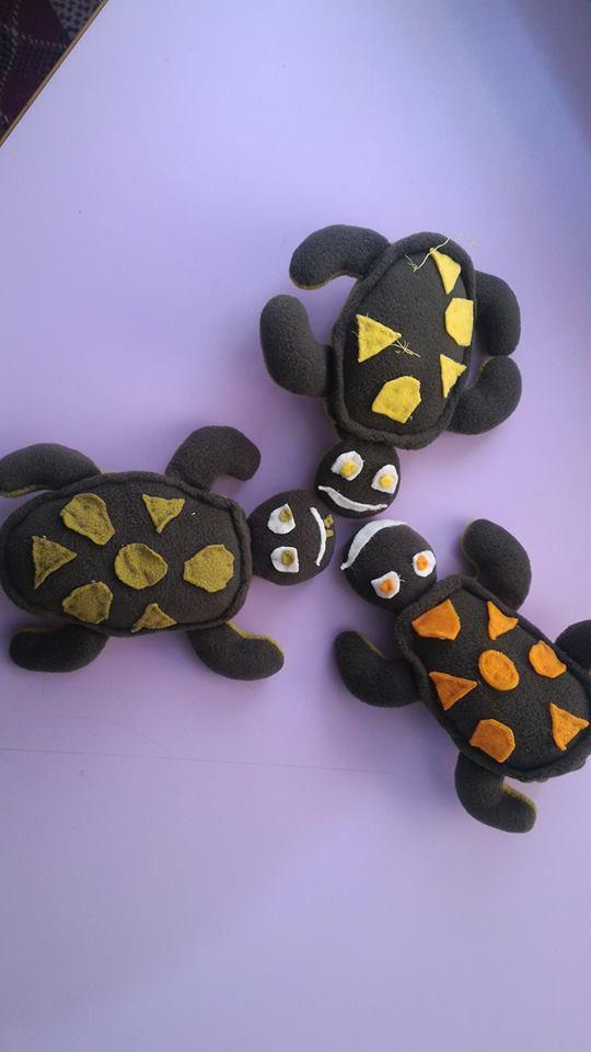 kaplumbaga-ve-yavrulari-3
