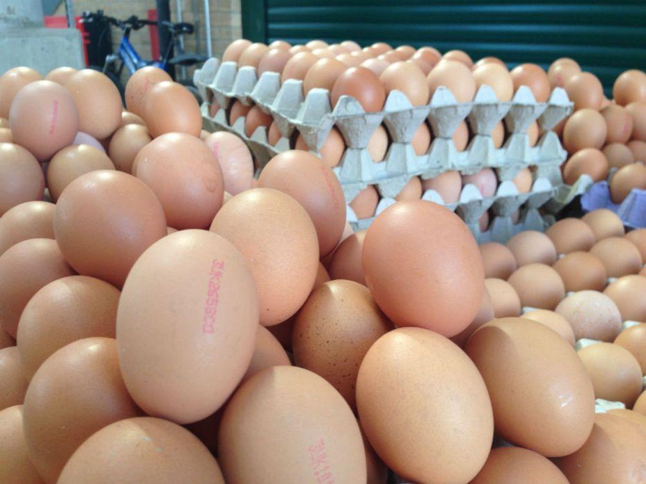 Yumurta Hakkında Mutlaka Öğrenmeniz Gereken 5 Gerçek