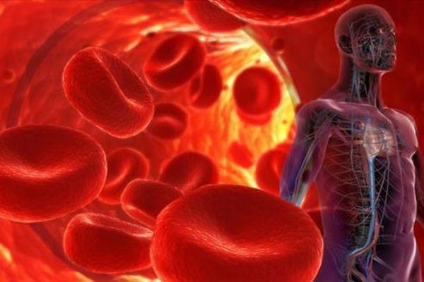 İnsan Vücuduyla İlgili Hiç Bilmediğimiz 20 Şaşırtıcı Gerçek