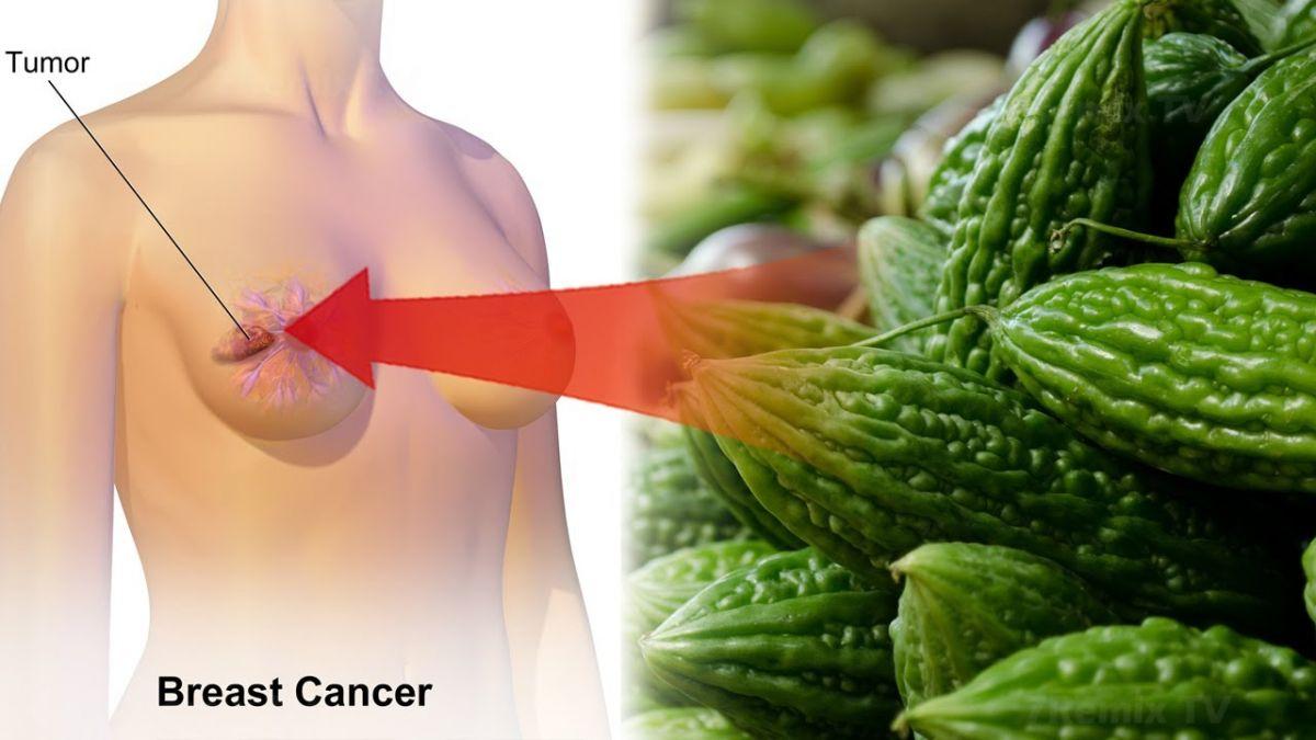 Ama St. Louis Üniversitesinde yapılan araştırmalar, kudret narının sadece tatlı bir meyveden çok daha fazlası olduğunu gösteriyor. Sonuçlara göre kanser hücrelerini önlüyormuş.