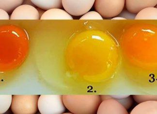 Hangi Yumurta En İyisi? Öğrenmek İçin Bu Basit Testi Yap...
