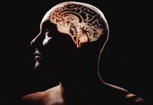 Beyniniz yalan söyler mi?